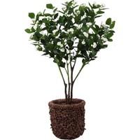 Annaflower Yapay Yasemin Ağacı