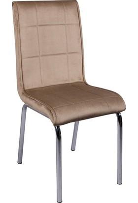 Evistro Kadife Kumaş Sandalye Vizon