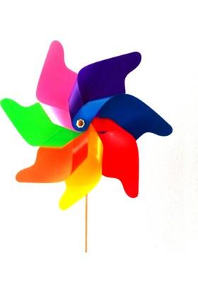 Polingarden Rüzgar Gülü Çap:78Cm Pol 16
