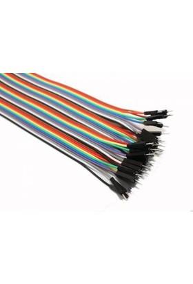 China 40 Pin Ayrılabilen Dişi-Erkek Jumper Kablo-300 Mm