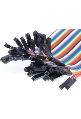 China 40 Pin Ayrılabilen Dişi-Dişi Jumper Kablo-300 Mm