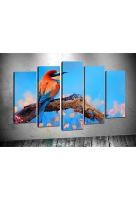 Caddeko Rpt60 Renkli Kuş Dekoratif Kanvas Tablo 70 x 100 cm