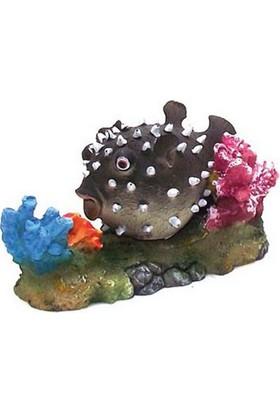Chicos Akvaryum İçin Dekoratif Balon Balık