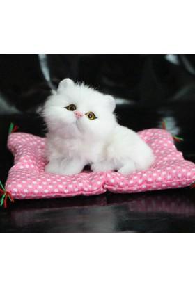 Trendelektro Bön Bön Bakan Masum Sevimli Peluş Kedicik - Miyavlayan Kedi (Beyaz)