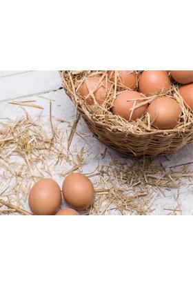Fide Sepeti Doğal Köy Yumurtası 15'Li Paket