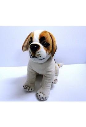Peluşcu Baba 40 cm Oturan Köpek Gerçek Yüzlü Peluş Oyuncak Sağlıklı