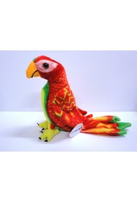 Peluşcu Baba 40 cm Papağan Kuş Gerçek Yüzlü Peluş Oyuncak Sağlıklı