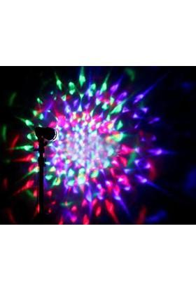 Toptancı Kapında Renkli Led Döner Başlıklı Disko Ampulü