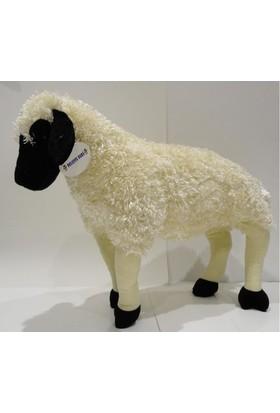 Peluşcu Baba 80 cm Ayakta Koyun Kuzu Koç Peluş Sağlıklı Oyuncak