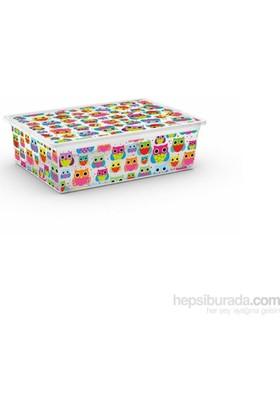 Hiper C Box Style Bubbees L Sak.Kutusu