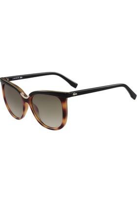 a2b91ee06c1bb Lacoste Güneş Gözlüğü ve Fiyatları - Hepsiburada.com