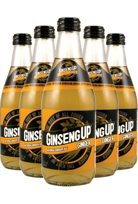 Ginseng UP Zencefilli Ginseng Suyu İçeceği 24x355ML
