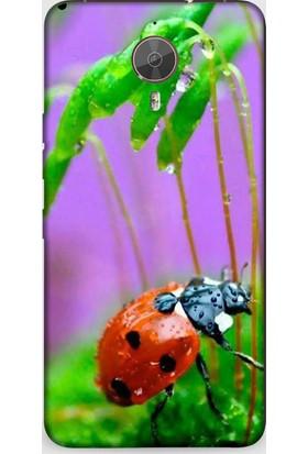 Dynamics General Mobile Gm5 Plus Vahşi Doğada Uğur Böceği Desenli Kılıf
