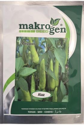 Makrogen Seed Alaz Cin Biber Tohumu 10 Gram