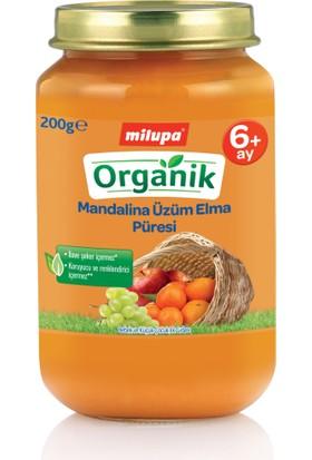 Milupa Organik Mandalina Üzüm Elma Püreli Kavanoz Maması 200 gr