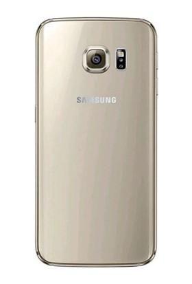 Casecrown Samsung Galaxy S6 Arka Pil Batarya Kapak Gold