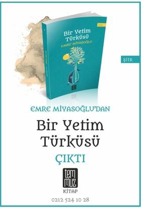 Bir Yetim Türküsü