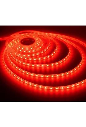 Fulllıght 3 Çip Dışmekan Silikonlu Şerit Led 12V (Kırmızı) - 5Mt'Lik Paket