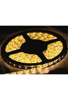 Fulllıght 1 Çip İçmekan Şerit Led 12V (Gün Işığı) -10Mt'Lik Paket