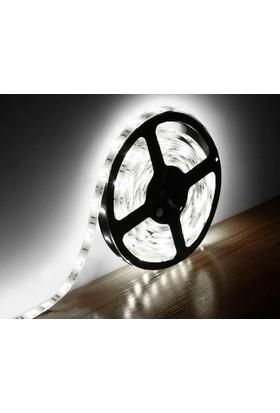 Hanover 3 Çip İçmekan Şerit Led 12V (Beyaz Işık) - 5Mt'Lik Paket