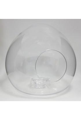 Greenmall Balon Teraryum Cam Fanus