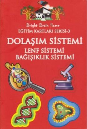 Eğitim Kartları Serisi-3: Dolaşım Sistemi Lenf Sistemi Bağışıklık Sistemi