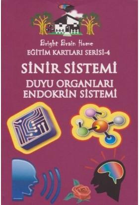 Eğitim Kartları Serisi-4: Sinir Sistemi Duyu Organları-Endokrin Sistemi