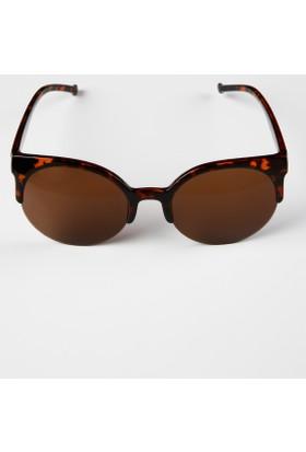 Colin's Kahverengi Kadın Gözlük