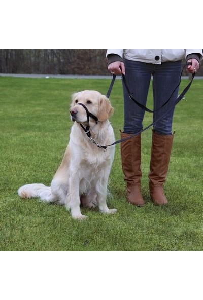 Trixie Uzman Köpek Eğitim Tasması L-Xl 37Cm