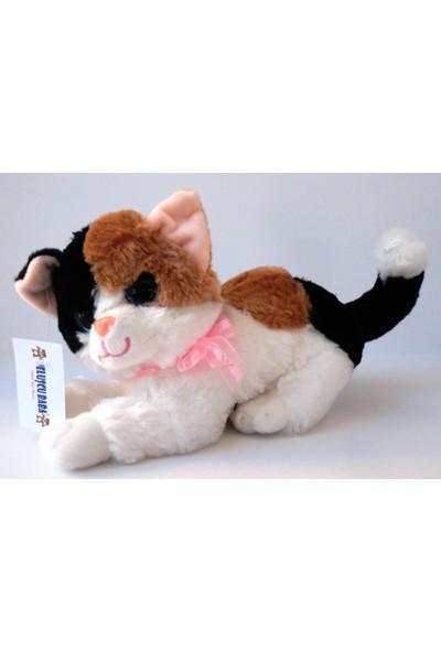 Peluşcu Baba 30 cm Sesli Kedi Renkli Gözlü Peluş Oyuncak Sağlıklı