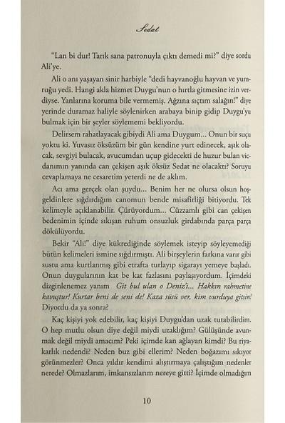 Bir Türk Masalı: Sedat - Işıl Parlakyıldız
