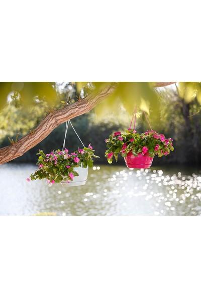 Mini Garden Safir Makrome Saksı 6 LT Beyaz
