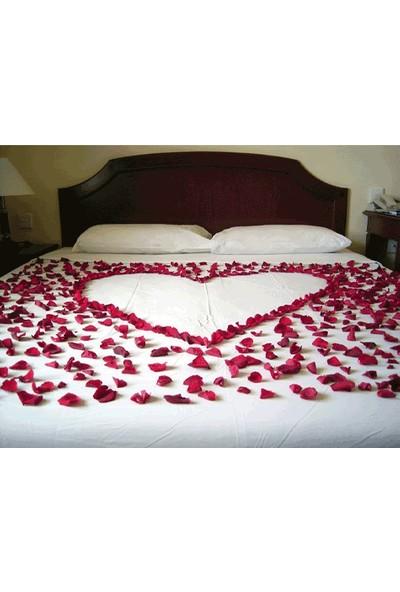 Toptancı Kapında Kırmızı 500 Gül Yaprağı 4 Adet Mum