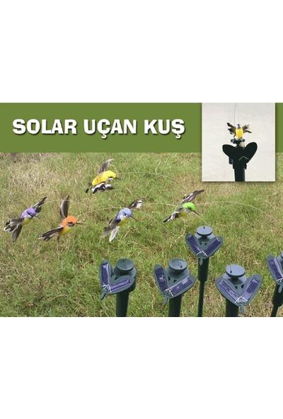 Toptancı Kapında Solar Butterfly Güneş Enerjili Uçan Kelebek/Kuş