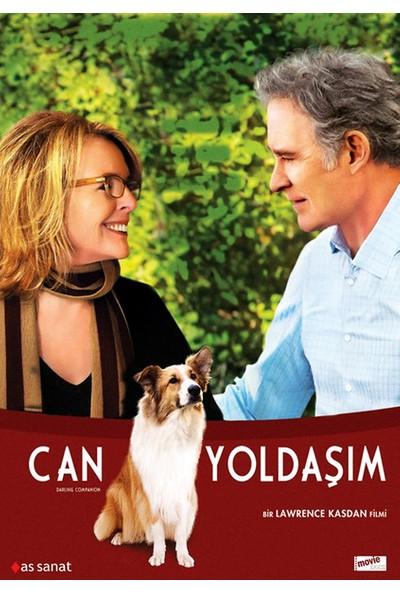 Can Yoldaşım-Darling Companion