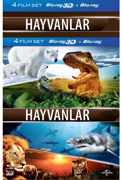 Hayvanlar 4 BD SET