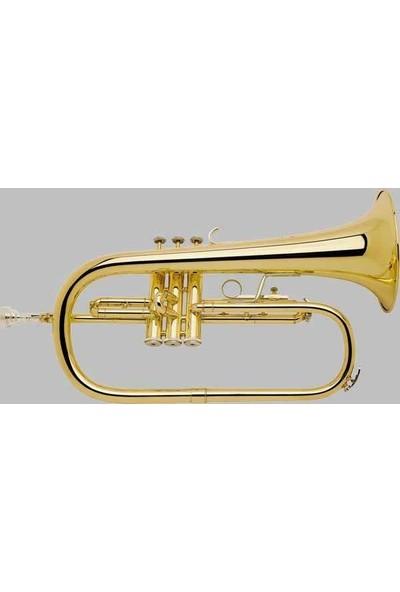 Bach FH200 Flugel Horn