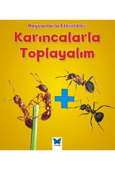 Karıncalarla Toplayalım
