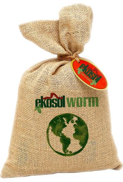 Ekosolfarm Kompostbox Solucan Evi 4 Katlı + 500 Eisenia Foetida Solucan