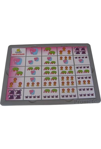 Montessori Mantık Oyunları