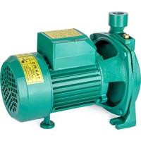 Staxx Power CPM158 1 Hp Su Pompası Santrifüj Pompa 30MSS 80 lt/dk