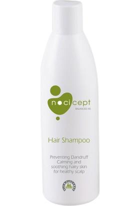Nocicept Balanced Hs_hair Shampoo - Onarıcı Şampuan
