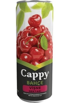 Cappy Vişneli Meyve Suyu 330 ml