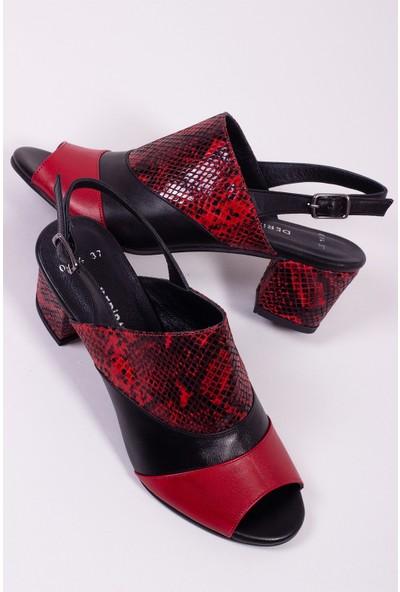 Tarçın Deri Siyah Kırmızı Yılan Klasik Günlük Kadın Topuklu Ayakkabı Trc71-0114