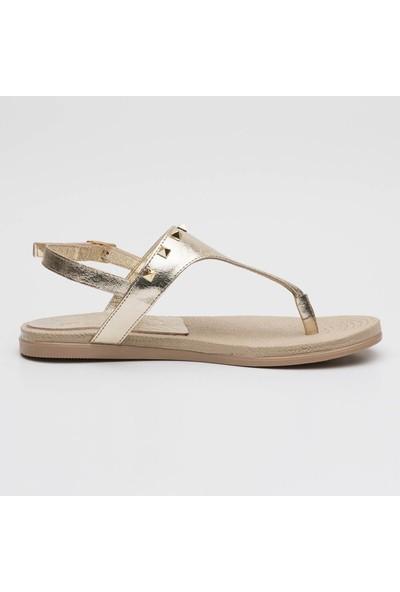 Sporthink Kadın Sandalet Dulce 1729-Dor