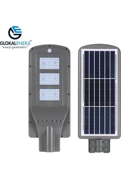 Glokal Enerji Solar LED Bahçe ve Sokak Aydınlatma Armatürü