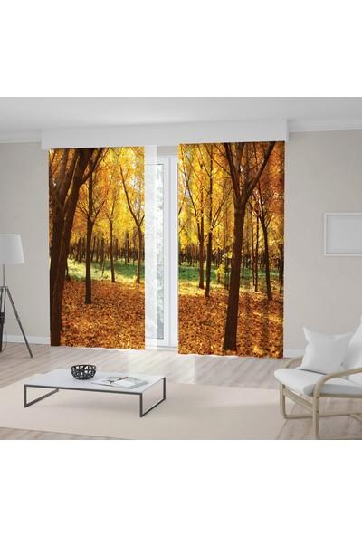 Henge Sonbahar Mevsimi Yaprak Ağaç Desenli Fon Perde