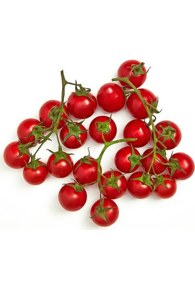 Boothas Cherry Domates Tohumu Organik Domates Tohumu 20'li + Torf + Saksı + Tohum