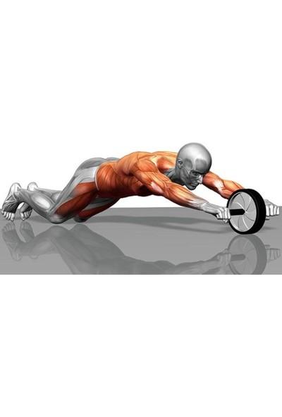 Fitness Karın Kası Sixpack Egzersiz Tekeri Spor Aleti