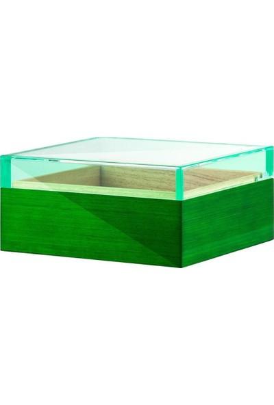 Angelo Plexi Kapak Ahşap Puro Kutusu Humidor Yeşil (BF)